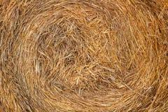 Fond naturel de pile sèche de foin Image stock