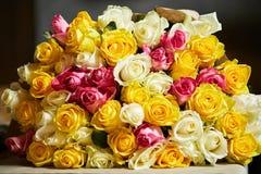 Fond naturel de roses rouges Image stock