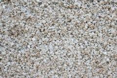 Fond naturel de texture de plage de coquille images stock