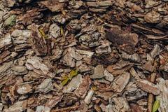 Fond naturel des morceaux rouges et bruns de paillis de d?chet de bois d'?corce d'arbre pour le jardinage ou les th?mes naturels image libre de droits