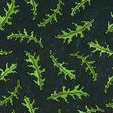 Fond noir de conseil Modèle sans fin sans couture d'Arugula, Rucola, Rocket Salad Fresh Green Leaves Herbe aromatique Cuisson fra Illustration Libre de Droits