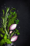 Fond noir de nourriture avec les herbes et les épices aromatiques fraîches, copie photographie stock