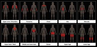 Fond noir de pièces de corps féminin de diagramme de muscle illustration stock