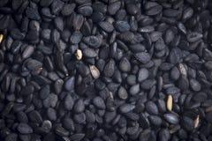 Fond noir de sésame photos stock