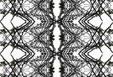 Fond noir et blanc abstrait Photo libre de droits