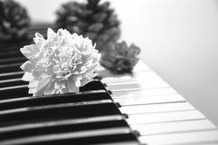 Fond noir et blanc de musique de concept Photo stock