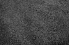 Fond noir et blanc de tapis de tissu Photos libres de droits