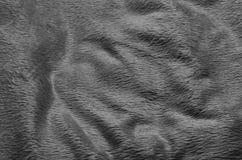 Fond noir et blanc de tapis de tissu Image libre de droits