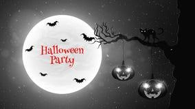 Fond noir et blanc pour la partie de Halloween Promenades de chat noir par l'arbre Les battes volent dans la perspective de la pl Photo libre de droits