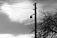 Fond noir et blanc vertical de ligne électrique Photographie stock libre de droits