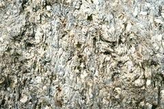 Fond normal de roche Pleine trame haute roche tauern (de l'Autriche) Photo stock