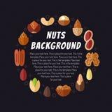 Fond Nuts de vecteur Conception plate moderne Cadre de cercle Image stock