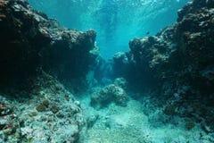 Fond océanique sous-marin rocheux de paysage marin Pacifique Photographie stock libre de droits