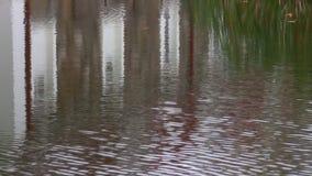 Fond ondulé de l'eau avec la réflexion blanche de bâtiment banque de vidéos