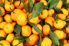 Fond orange Photos libres de droits