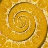 Fond orange de fractale d'abrégé sur remous de spirale de tranche Modèle orange de fond de spirale de tranche Nourriture orange a Images stock