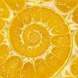 Fond orange de fractale d'abrégé sur remous de spirale de tranche Modèle orange de fond de spirale de tranche Nourriture orange a Images libres de droits