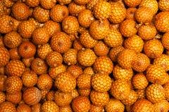 Fond orange de fruit Image stock