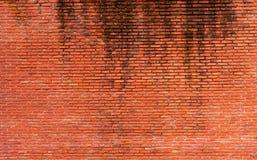 Fond orange de texture de mur de briques Fond pour le texte Concept extérieur d'architecture Abrégé sur orange sale mur de brique photos stock