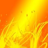 Fond orange et jaune Image stock