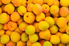 Fond orange juteux mûr de fruit d'abricots photos libres de droits