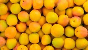 Fond orange juteux mûr de fruit d'abricots image stock