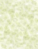 Fond organique texturisé de feuille. Photo stock
