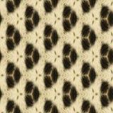 Fond ou texture sans couture abstrait faite de fourrure de léopard Photo stock