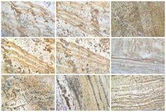Fond ou textures naturel de la chaux neuf Photographie stock libre de droits