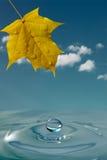 fond paisible d'environnement Photos stock