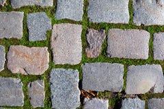 Fond pavé en cailloutis de trottoir Images stock