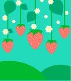 Fond plat mignon de fraise Photographie stock libre de droits