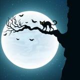 fond pour Halloween Chat noir sur l'arbre Les battes volent dans la perspective de la pleine lune Vecteur Photos stock