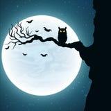 fond pour Halloween Hibou noir sur l'arbre Les battes volent dans la perspective de la pleine lune Vecteur Photographie stock