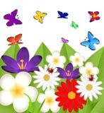 Fond pour une conception avec de belles fleurs Photo libre de droits