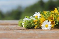Fond pour une inscription Fleurs sauvages sur une table en bois dedans Photographie stock