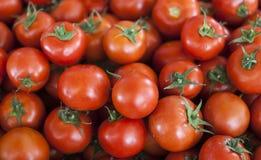 Fond qualitatif des tomates Tomates fraîches Tomates rouges Tomates organiques du marché de village Image libre de droits