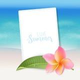 Fond réaliste de mer Fond tropical de plage de fleurs Photographie stock libre de droits