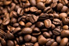 Fond rôti frais de grains de café d'arabica Image stock