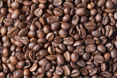 Fond rôti de grains de café Images libres de droits