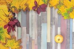 Fond rayé avec des feuilles d'automne Images stock