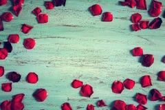 Fond romantique avec des pétales de rose sur un bois bleu Image libre de droits