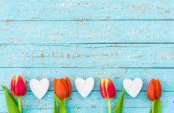 Fond romantique d'amour avec les coeurs et la frontière rouge de tulipes sur le bois bleu-clair avec l'espace pour le texte Images libres de droits