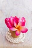 Fond romantique d'amour de vintage décoré de la belle fleur p Photographie stock