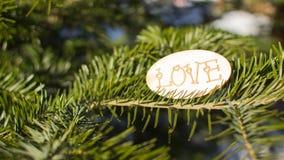 Fond romantique d'hiver avec l'amour de mot Photos libres de droits