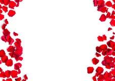 Fond romantique des pétales de rose rouges Image stock