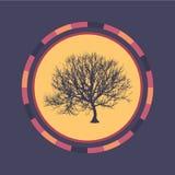 Fond rond coloré de technologie avec l'arbre Illustration digitale abstraite Concept de connexion Conception ronde électronique m Photographie stock libre de droits