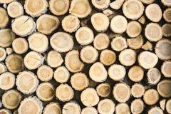 Fond rond de texture de bois de construction de vue Image libre de droits