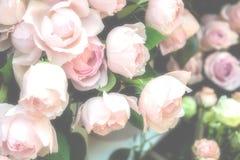 Fond rose de Rose Photographie stock