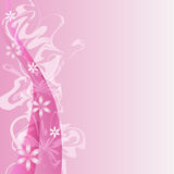 Fond rose de fleur Photo stock